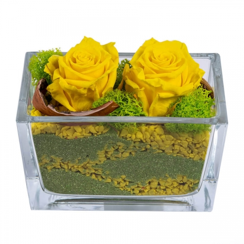 Yellow preserved roses in a glass vaze