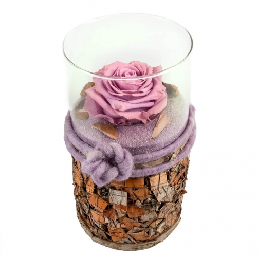 Purple preserved rose in a special vase