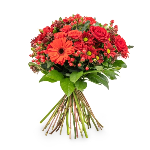 Red bouquet with roses hypericum and gerberas
