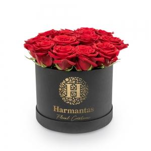 Κόκκινα τριαντάφυλλα σε μαύρο κυκλικό κουτί
