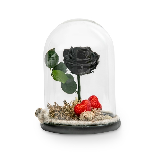 Black forever rose with hearts in glass bell