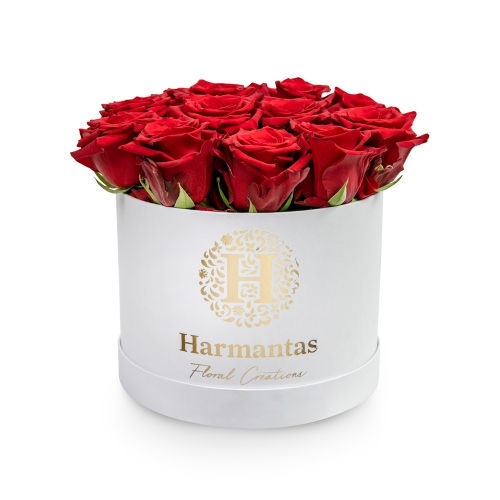Red roses in white circular box