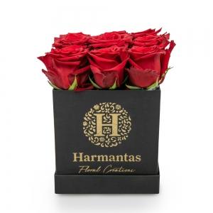 Κόκκινα τριαντάφυλλα σε τετράγωνο μαύρο κουτί
