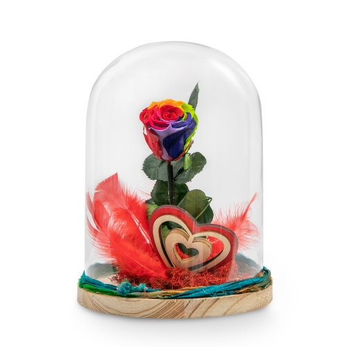 Rainbow forever rose with wooden heart and feathers